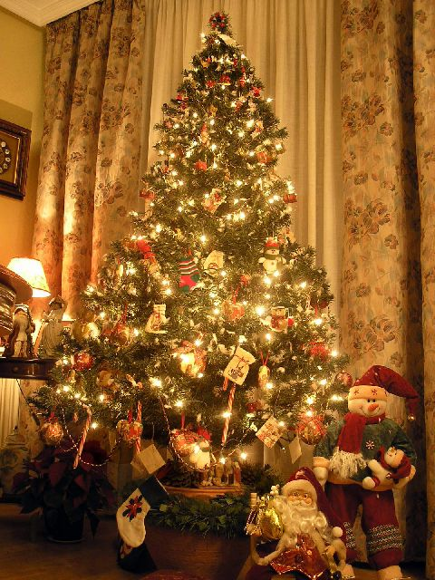 de acuerdo a la tradicin el de diciembre se debe armar el rbol de navidad en con el da de la virgen la historia de esta ceremonia